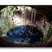 Cenote De Yucatan, Mexico