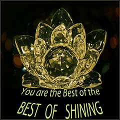 Excellence Best of Shining
