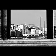 Meditando... (Nicolo Boggio) Tags: africa blackandwhite islam mosque casablanca hassan