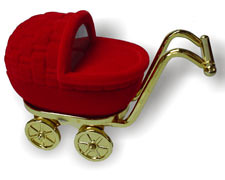Estojo Carrinho de Bebê