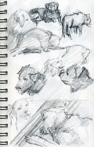 sketch238