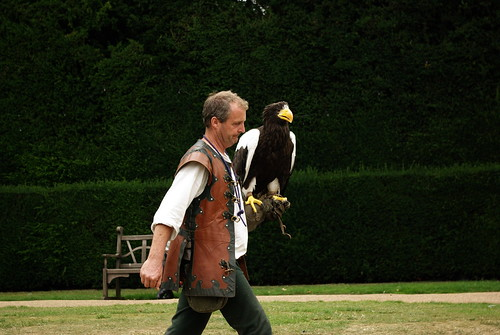 Falconer and Sea Eagle