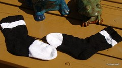 Colobus Monkey Socks