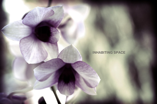 Inhabiting Space