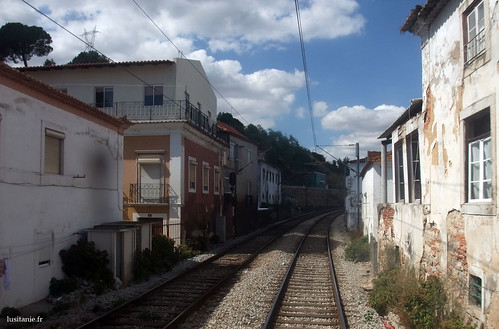 Houses sticked to the railway