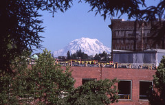 Day 202/365 - Framed Rainier (Great Beyond) Tags: trees red building tree brick slr film analog 35mm canon buildings project eos washington downtown image kodak july slide ishootfilm slidefilm mount 35mmfilm mountrainier rainier k2 tacoma kodachrome kr 365 eastman slides 3000v 2010 kodachrome64 k14 latent eastmankodak project365 downtowntacoma canoneosrebelk2 filmisnotdead canonrebelk2 kr64 iso64 kodakkodachrome64 latentimage july2010 tamronaf28200mm tamron28200mmf3856ldasphericalifsuper