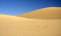 20080528   Khongoryn Els Sand Dunes, Gobi Gurvansaikhan National Park, Mongolia 040 (Gary Koutsoubis) Tags: sand dunes mongolia 2008 gobi sanddunes gobidesert gobigurvansaikhannationalpark khongorynels roundtheworld2008 khongorynelssanddunes