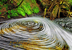 Fromme Swirls (Christopher J. Morley) Tags: longexposure water pool vancouver creek moving moss bc branches bubbles hike trail northshore swirls fromme f13 13second