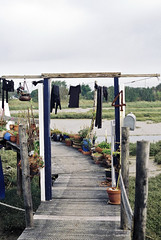 Laundry Day (paul_phillpot) Tags: canonav1 film 35mm houseboat housing shorehambysea paulphillpothousingassignment