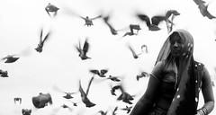 pigeons III (nandadevieast) Tags: blackandwhite bw woman india birds pigeons panasonic gujarat anurag dwarka 2069 anuragagnihotri lx3 agnihotri nandadevieast