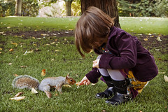 Feeding time (Paul_Murray_TS1) Tags: york girl gardens squirrel child feed imogen canon1755mmf28isusm canon50d