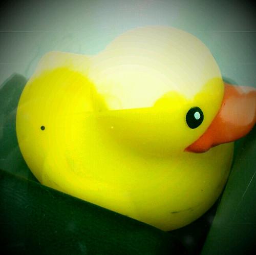 retro ducky