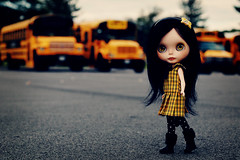 Can I Go to School? - 38/52 Weeks of Blythe