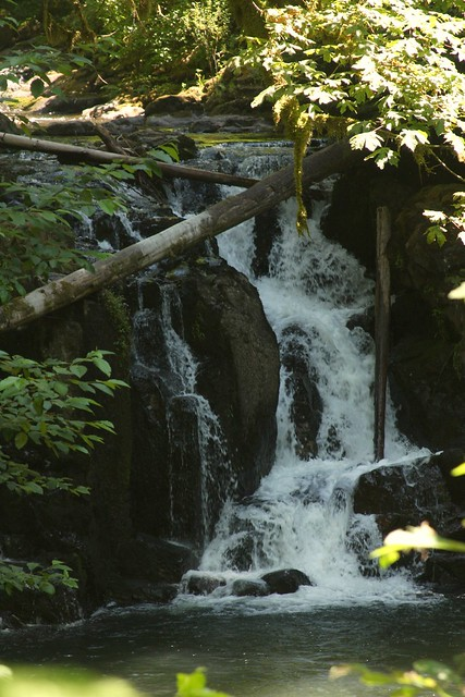 Crystal Pool Falls, McDowell Creek