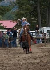 Cow Girl (imjustinobrien) Tags: ranch cow raw rodeo cowgirl hy lasso hogtie ridin