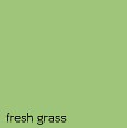 paint fresh grass