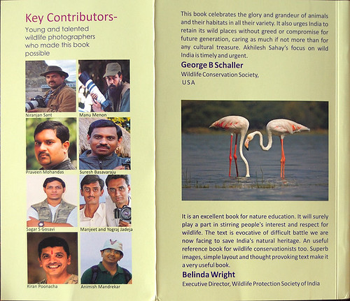 "Back cover of ""Glimpses from India's natural world"" A book for nature education - By Shri AK Sahay. (with our flamingo image)"