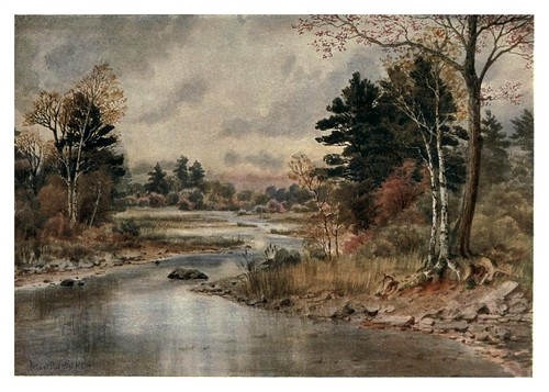011-Otoño en New Brunswick-Canada-1907- Thomas Martin Mower