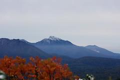 雪化粧のニペソツ山