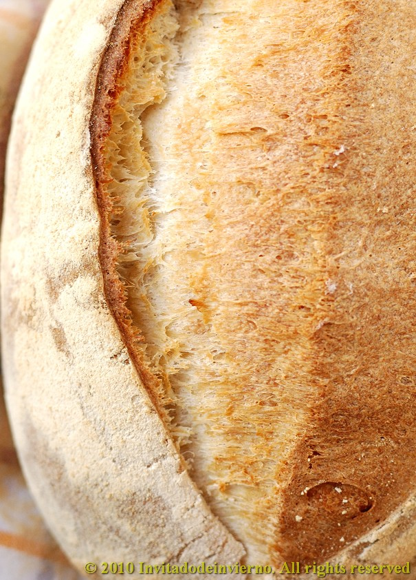 Vichy bread 4