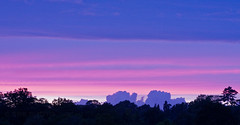 Sunset (Susan SRS) Tags: uk pink blue sunset england sky colour silhouette clouds skyscape sussex image haywardsheath gb 3754 sunsetwednesday