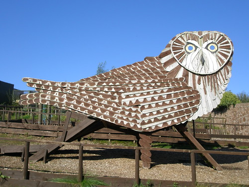 The Scottish Owl Centre, Campbeltown