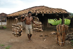 Man carrying a heavy load of wood village Kuda devri_1 (MPRLP) Tags: wood man men village heavy load collect carry headload biogas