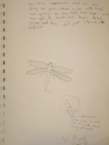 Dragonfly by Zippy -- age 10