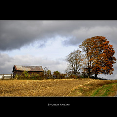 (Shobeir) Tags: autumn tree fall abandoned landscape countryside october decay farm oldhouse forgotten abandonedhouse upstatenewyork roadside decayed bran abandonedplace ruralscene rurallandscape newyorklandscape singleraw shobeiransari northeastcountryside