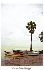 Ocean Souls ( delta_mizan ) Tags: ocean tree nature water canon landscape boats sand rocks pebbles palm bangladesh riverscape 450d maowa