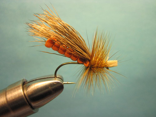 Morrish Foam October Caddis Adult
