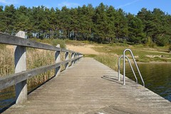 Steg (ThomasKohler) Tags: bridge autumn lake fall germany deutschland see herbst brcke steg bruecke feisneck seenplatte warenmritz mritzsee mueritzsee warenmueritz feisnecksee
