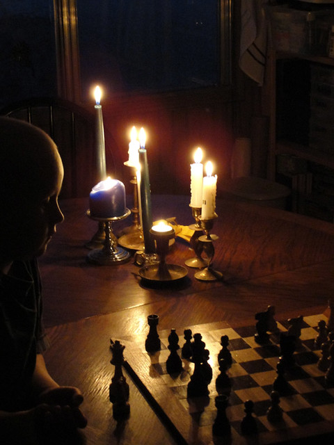 Squirt playing chess