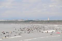 Enoshima Beach