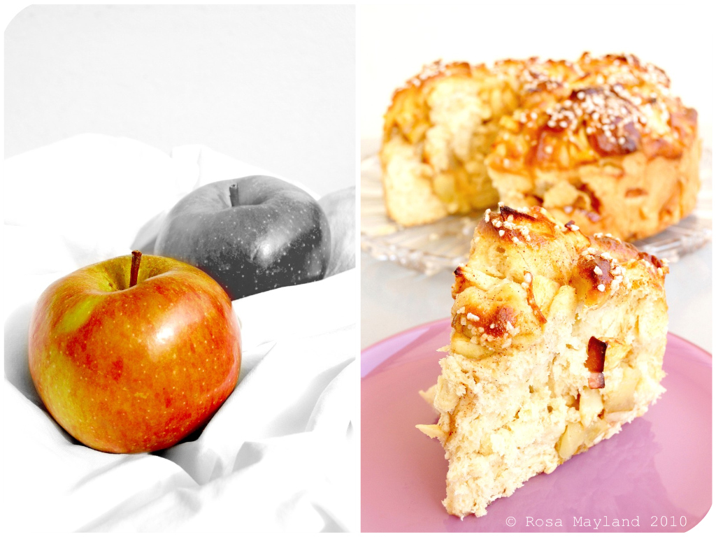 Apple Challah Picnik-Collage 1 bis