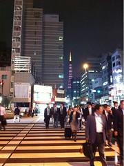 浜松町。東京タワー、キレイ。