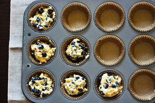 Blueberry cornmeal muffins in tin 1 (1 of 1)