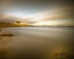 Me, a Tree, Some Hills and the Sea (BoboftheGlen) Tags: longexposure sea tree beach water island bay coast scotland argyll small inner hills jura shore isles hebrides craighouse the4elements coastuk tokina1116