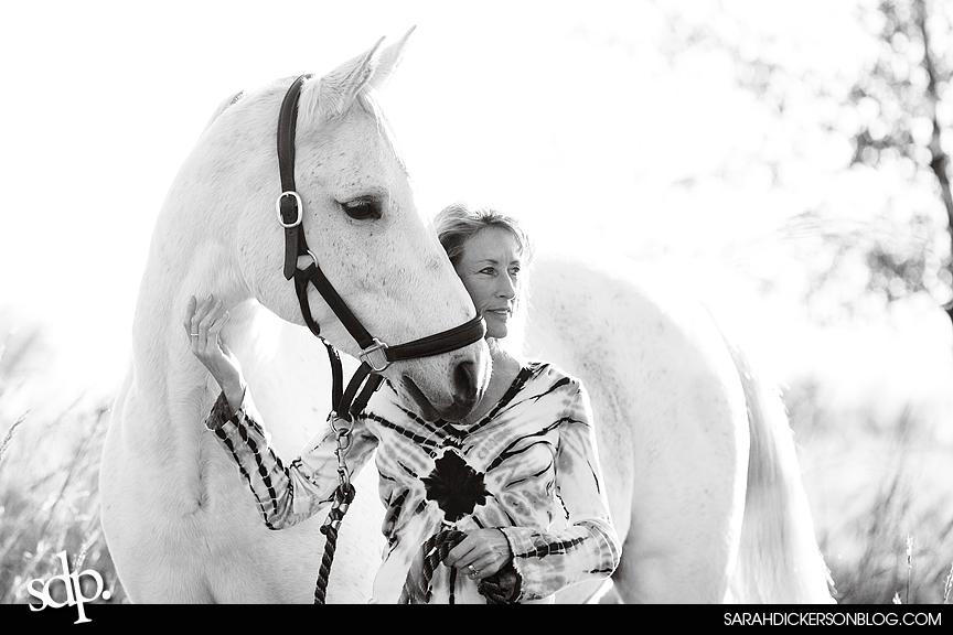 Kansas equine photos