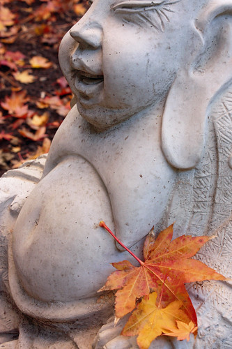 Buddha profile with autumn leaves