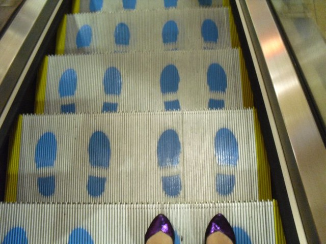 escalatorsforstupidppl