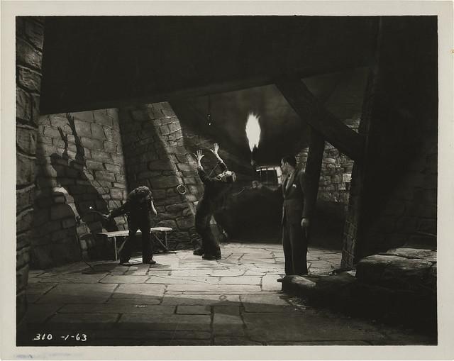 Frankenstein (Universal, 1931) 22