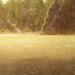 Gary Steele Bennett_ Morning Mist on the Yakima