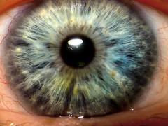 ~ MY BIG EYE ~ (ViaMoi) Tags: canada macro eye photo sony ottawa cybershot supermacro depth viamoi saariysqualitypictures additionallens