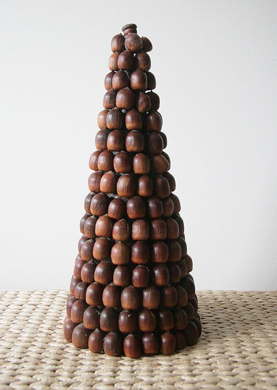 acorn1