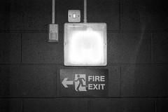 emergency light (friendlydrag0n) Tags: light lamp monochrome sign wall dark switch fire grey escape darkness gray grain route trunk arrow exit emergency pictogram conduit sensor luminaire trunking