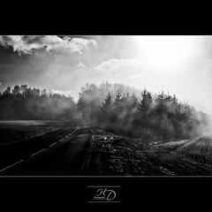 In the Shadow (HD Photographie) Tags: morning white mist black france macro ex fog landscape noir pentax explorer ardennes sigma explore and paysage et blanc brouillard f28 dg brume matin 2470mm k7 sigma2470mmf28exdgmacro aiglemont