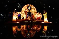 Belen (mian0827) Tags: christmas photography lights makati ayala symphonyoflights ayalatriangle mianstacruz