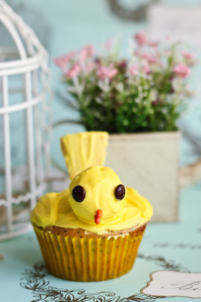 canary_cupcakes-6