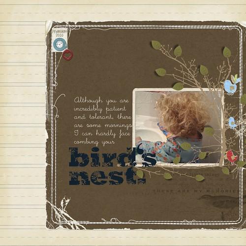 birds_nest.jpg